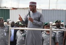 Nigeria Customs Impounds Vehicles, Indian Hemp and others worth N1.6bn