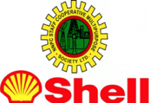 Shell Blames Third Parties for Non-diversion of Bonga Gas to Domestic Market