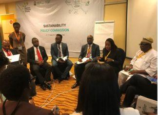 PIND, MADE to Champion Niger Delta Development Agenda