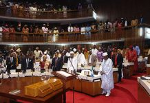 Sierra Leone Parliament Ratifies Bumbuna II Hydropower Project